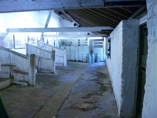 Photo:Interior of cattle sheds